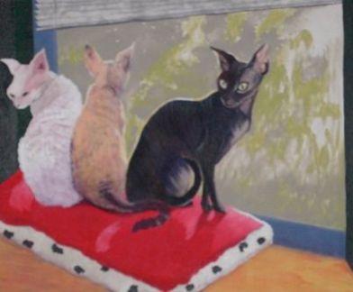 Jan's Cats