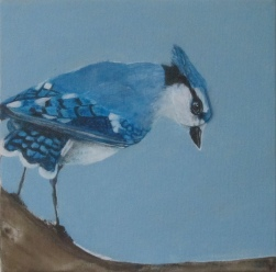 "BlueJay Way 7"" x 7"" $140.00"